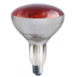 Industri LED Rød E27 150W infrarød glødetrådpære - Rød varmepære, R125