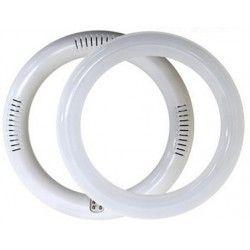 2D kompakt lysstofrør 18W LED cirkelrør - Ø30 cm, 230V