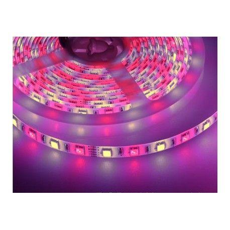 Image of 10,8W/m RGB+WW LED strip - 5m, 60 LED pr. meter