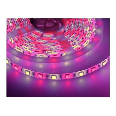 9,6W RGB+WW LED strip - 5m, 60 LED pr. meter