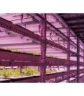 LEDlife Pro-Grow vækstarmatur - 120cm, 18W LED, 3:1